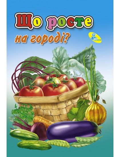 Книжка-картонка А6. Що росте на городi?