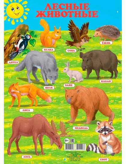 Плакат. Лесные животные