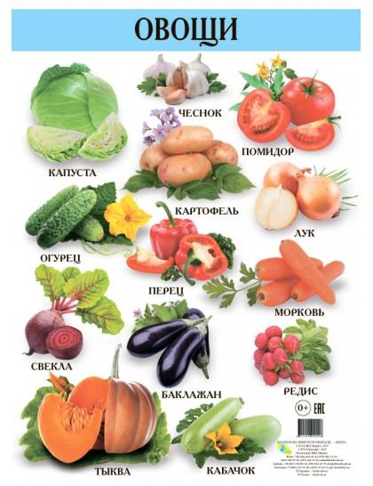 Плакат. Овощи