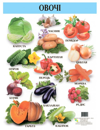Плакат. Овочі